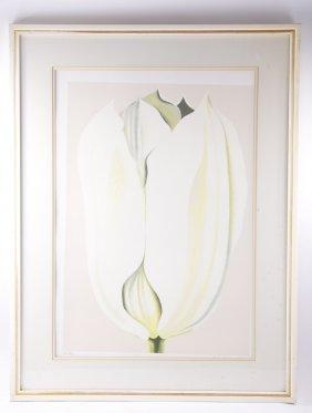 "Lowell Nesbitt (1933-1993), ""tulip"", Signed Lithograph"