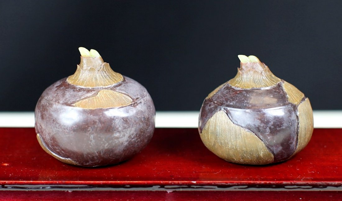 PAIR OF SHOU-SHAN STONE WATER CHESTNUTS