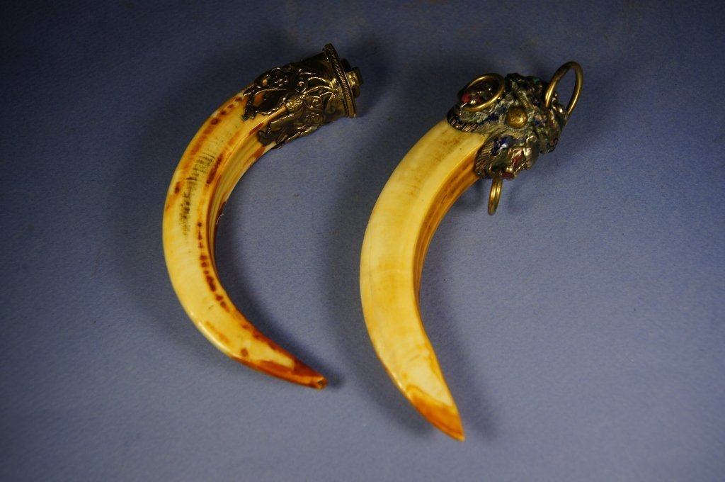 317: Pair of Chinese antique Tiger Tooth pendants
