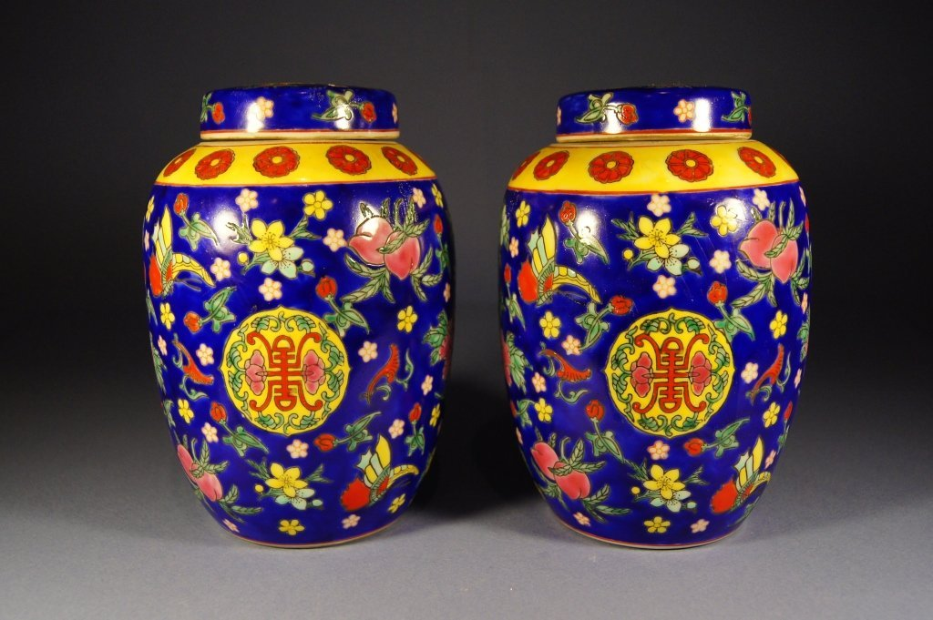 Pair of Chinese antique jar with lid
