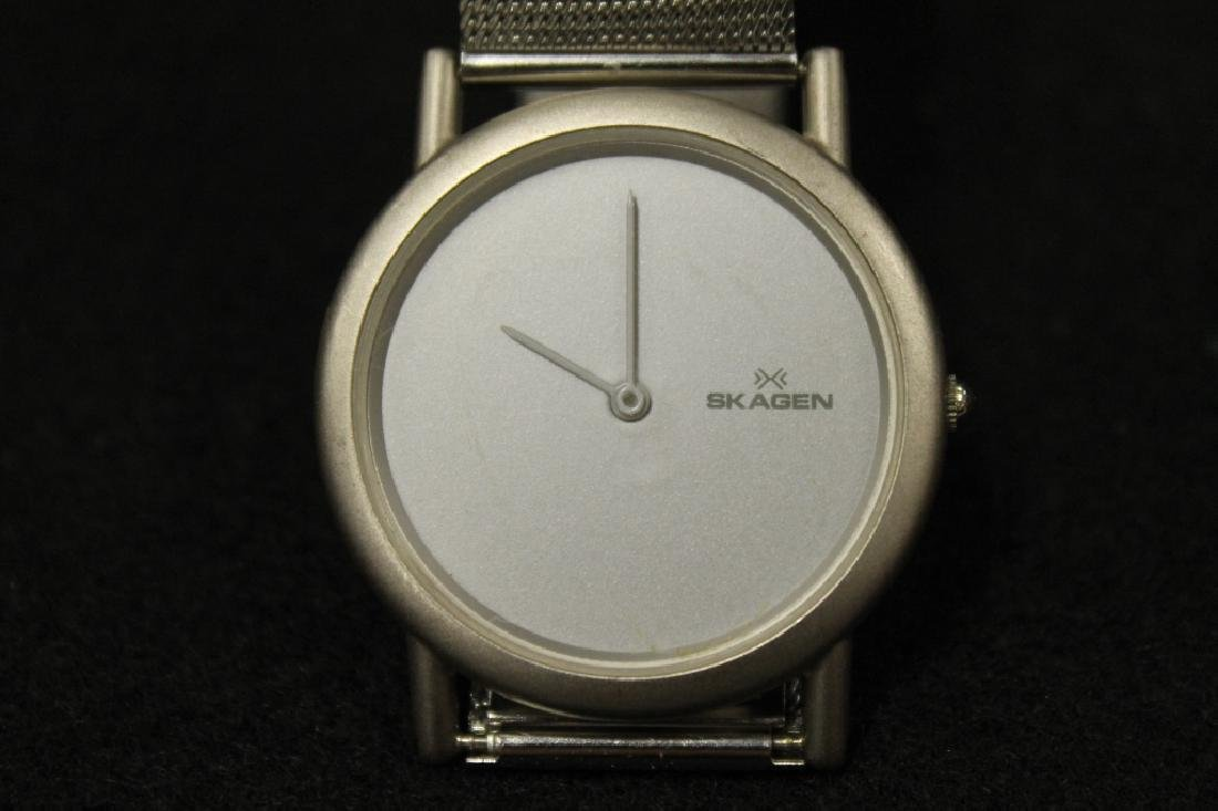Skagen Wrist Watch
