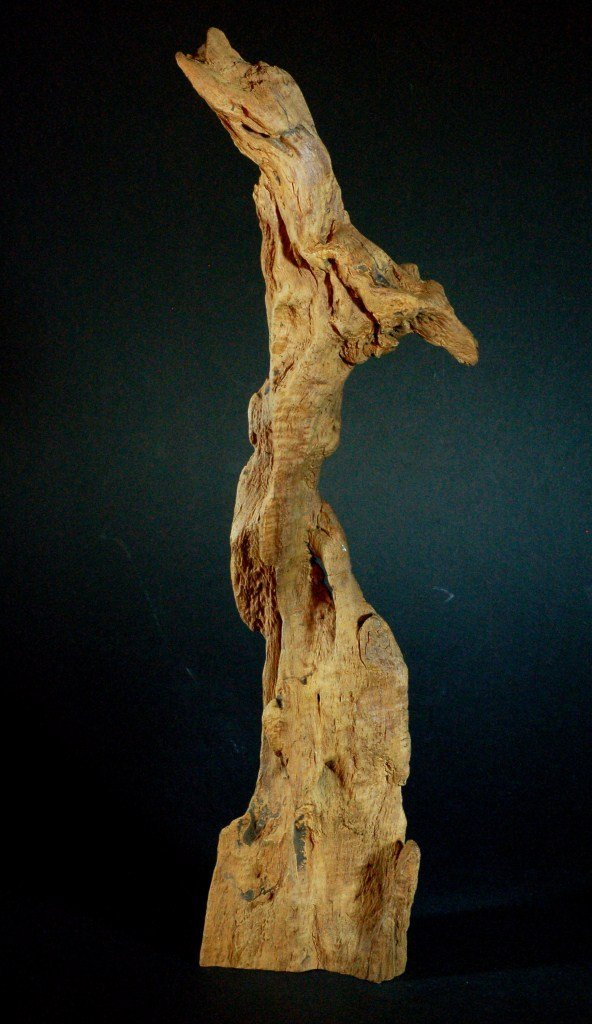 Large Piece of Chenxiang Wood
