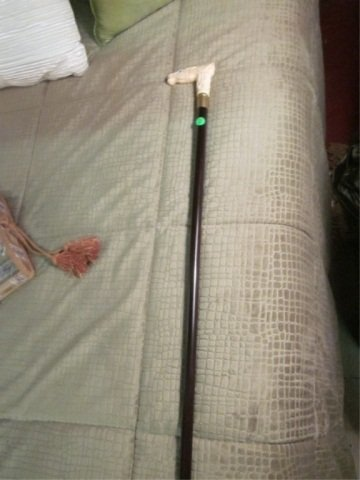 19: CANE WITH CARVED MARINE IVORY HORSE HEAD HANDLE