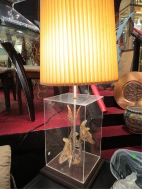 22: VINTAGE LAMP, LUCITE BOX BASE DISPLAYS PRESERVED BU