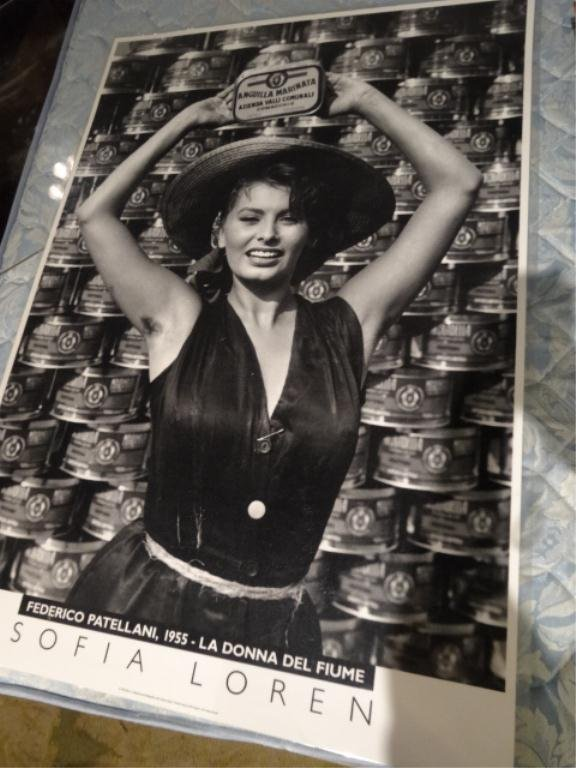 REPRODUCTION SOFIA LOREN POSTER, BLACK AND WHITE, IN