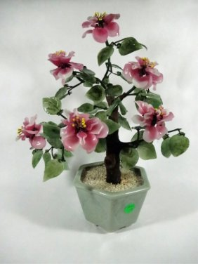 """Chinese Jade Tree, 6 Flowers, Pink, Approx 13.5""""h"""