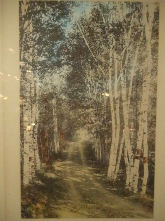 WALLACE NUTTING HAND TINTED PHOTOGRAPH, TITLED A - 2