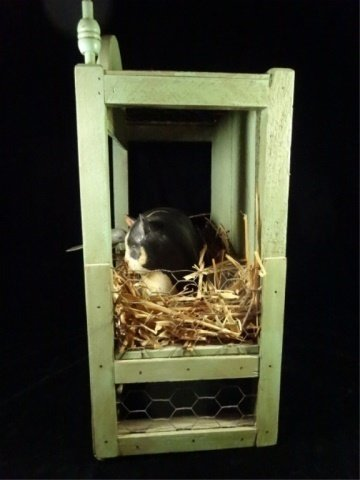 CAT IN BIRD'S NEST CARVED & PAINTED WOOD SCULPTURE, - 4