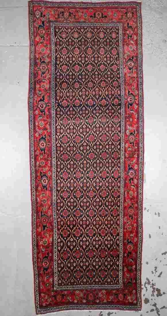 Antique West Persian Kurd Rug: 5'10'' x 16'5''