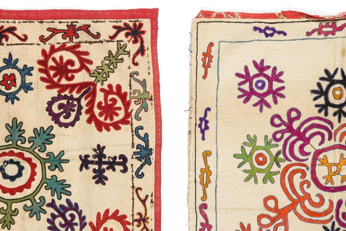 Pair of Antique Central Asian Kirghiz Embroideries - 4