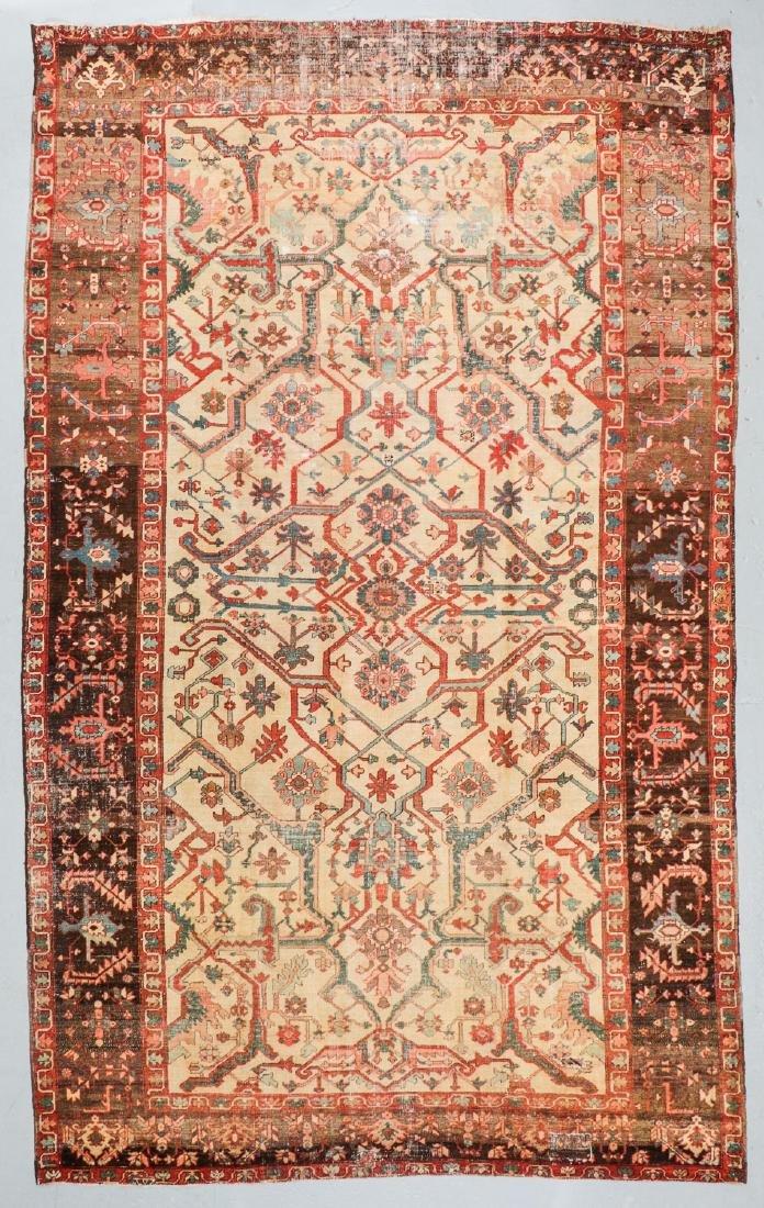 Antique Serapi Rug, Persia: 9' x 14'11''