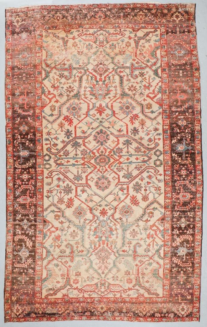 Antique Serapi Rug, Persia: 9' x 14'11'' - 7