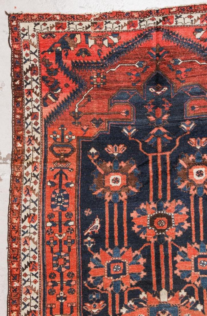 Antique Baktiari Rug, Persia: 5'2'' x 9'7'' - 3