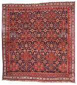 Antique Afshar Rug Persia 57 x 511