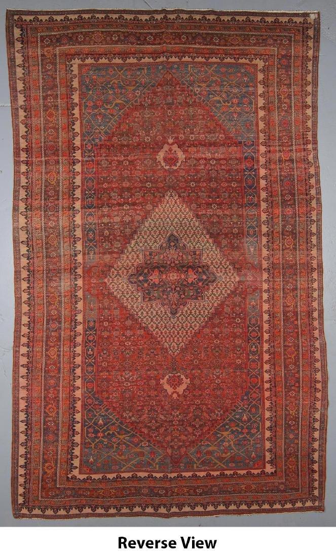 Bidjar Rug, Persia: 11'7'' x 18'8'' - 6