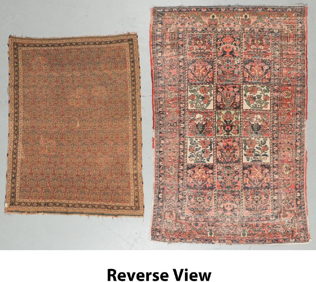 Antique Persian Afshar Rug & Baktiari Rug (2) - 6