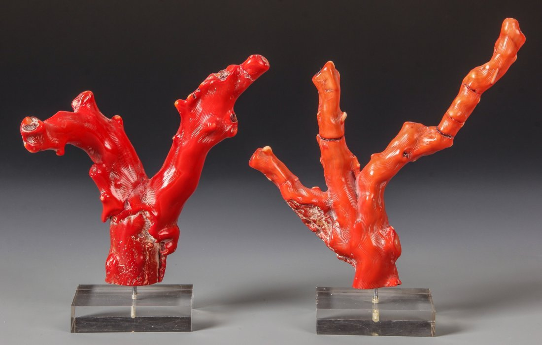 2 Red Coral Branches on Stands