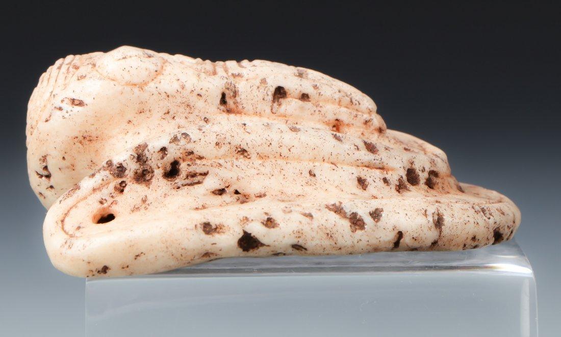 Taino Bird-Shape Pendant (1000-1500 CE) - 3