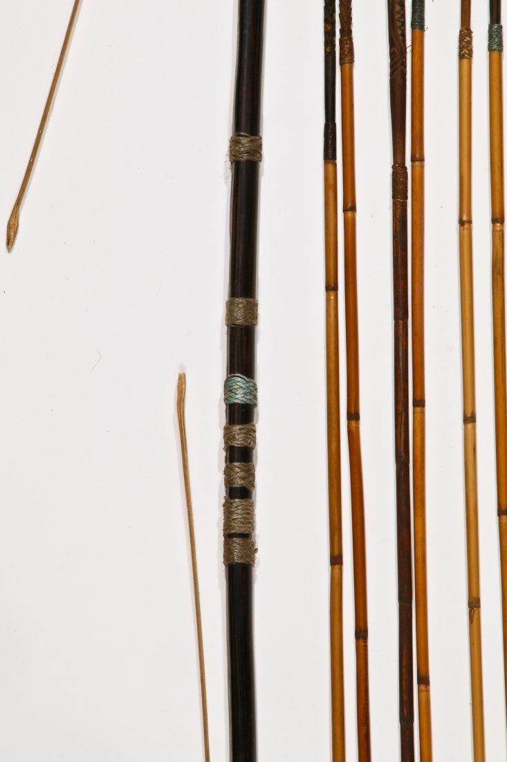 Papua New Guinea Bow and Arrows - 4