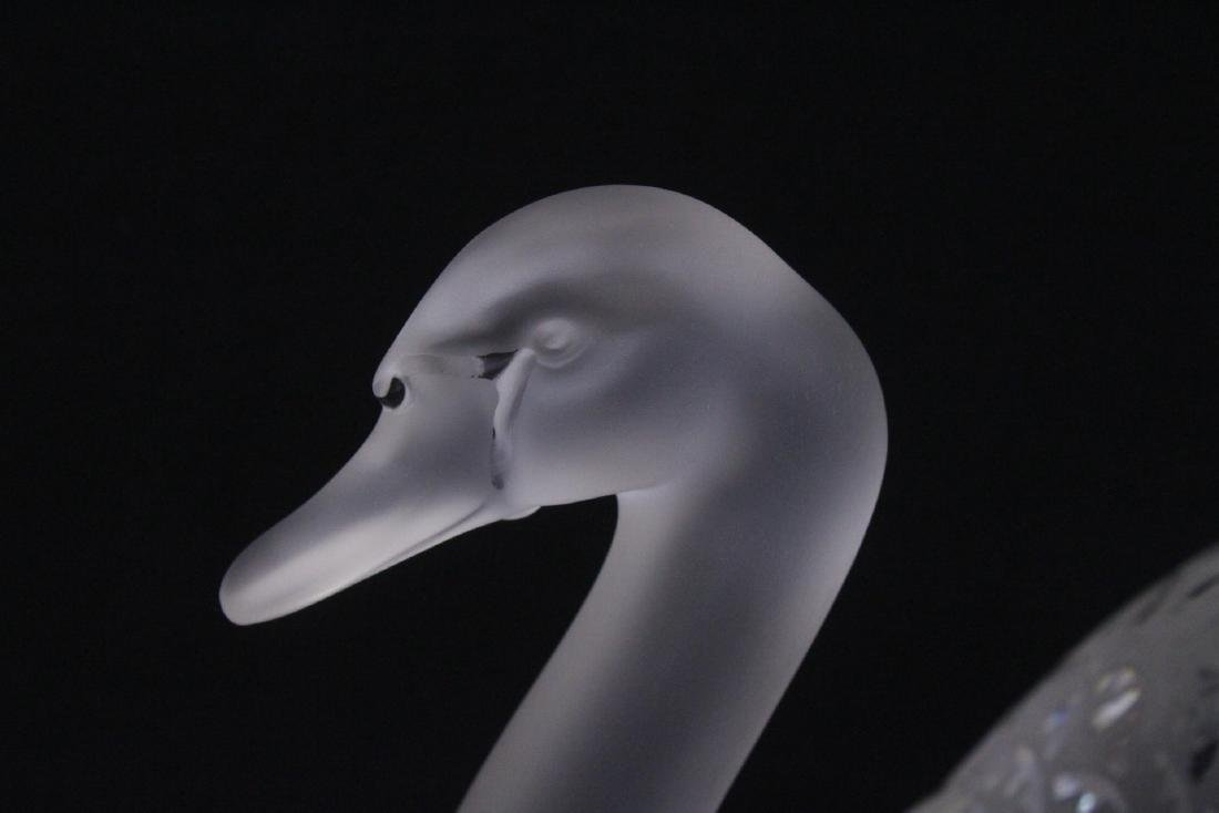 Pair beautiful large crystal swan by Lalique - 7