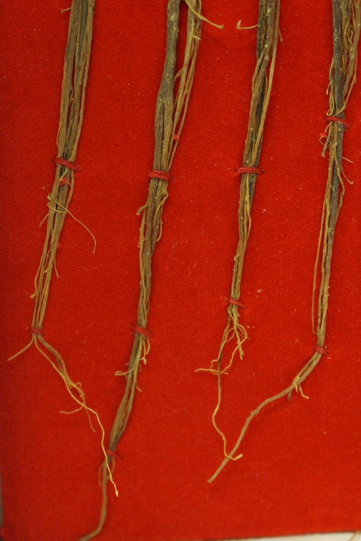 Chinese ginseng in box - 8