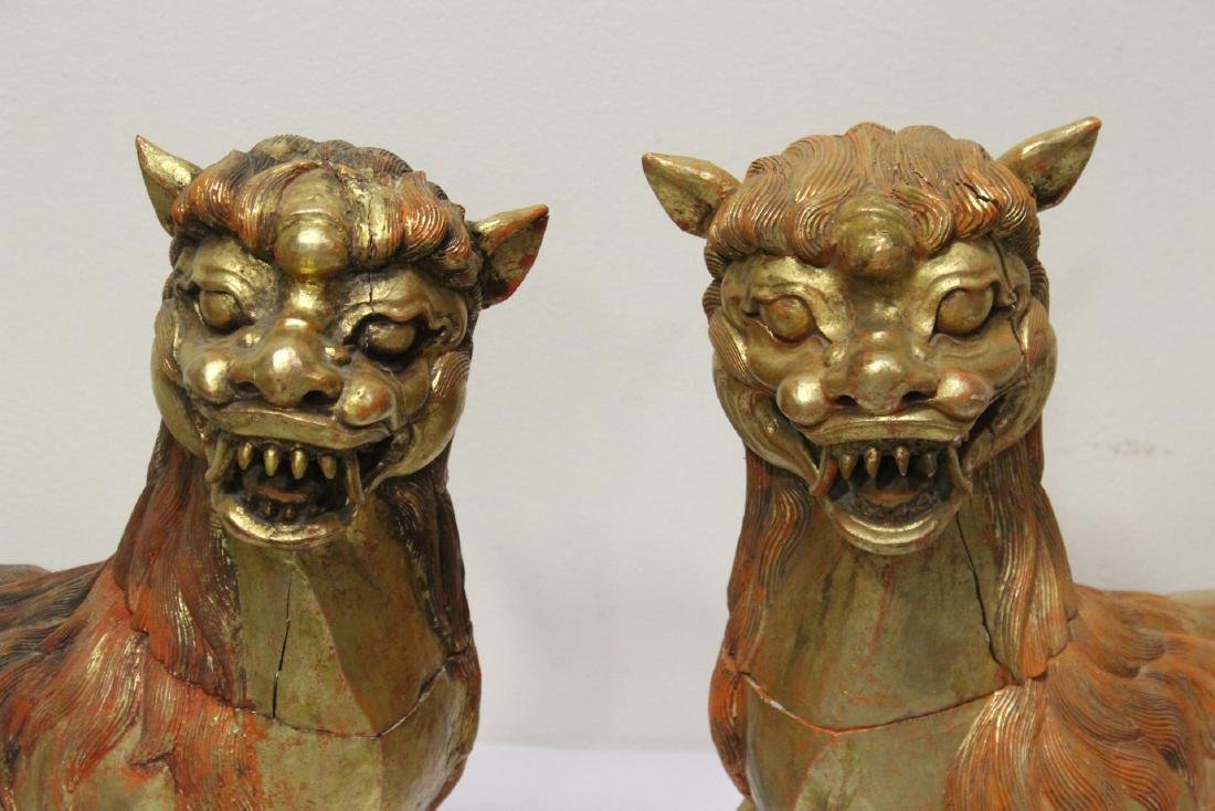 Pair gilt wood carved fulion - 4
