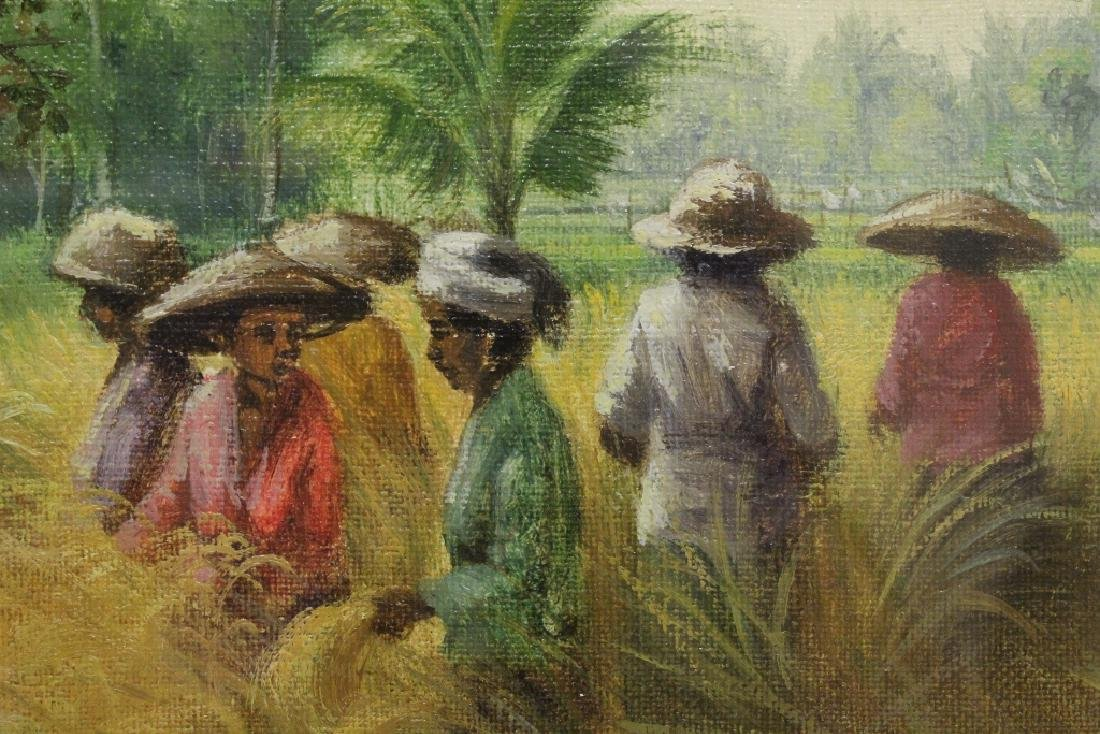"Framed oil on canvas ""rice field"" - 8"