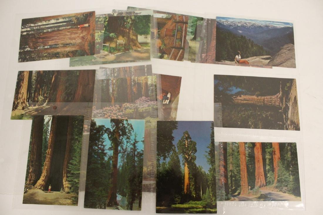 Lot of vintage postcards, mostly Asia - 7