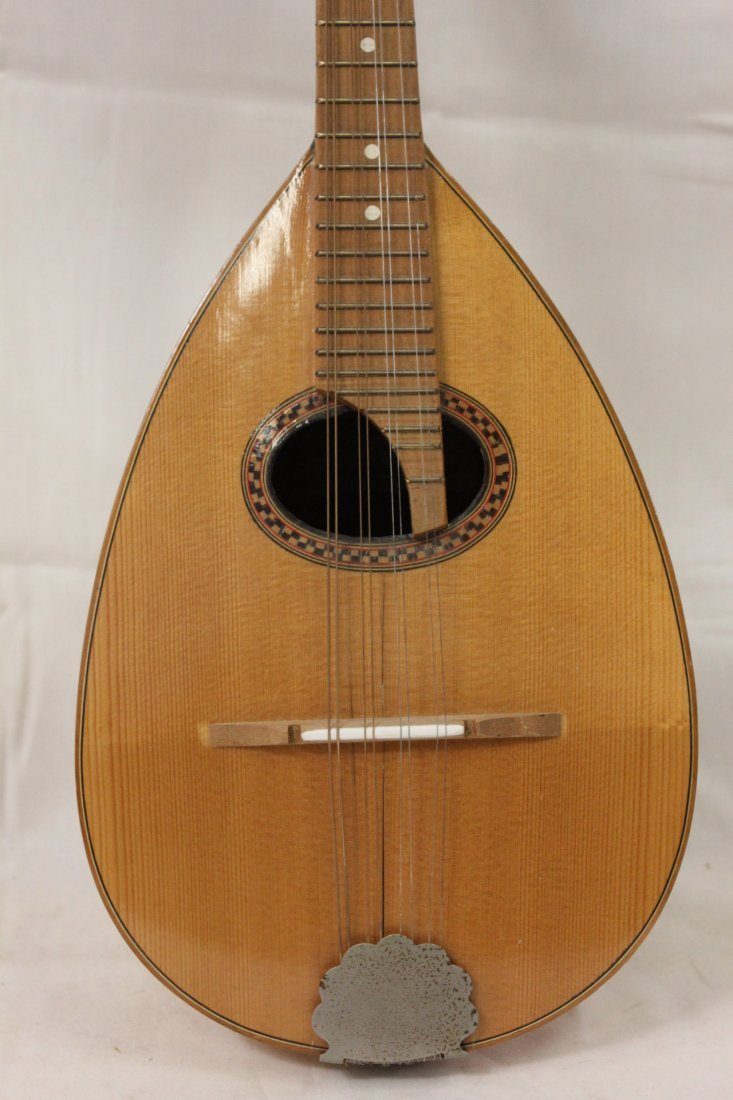 185: Italian mandolin by Leuteria Meazzi - 2