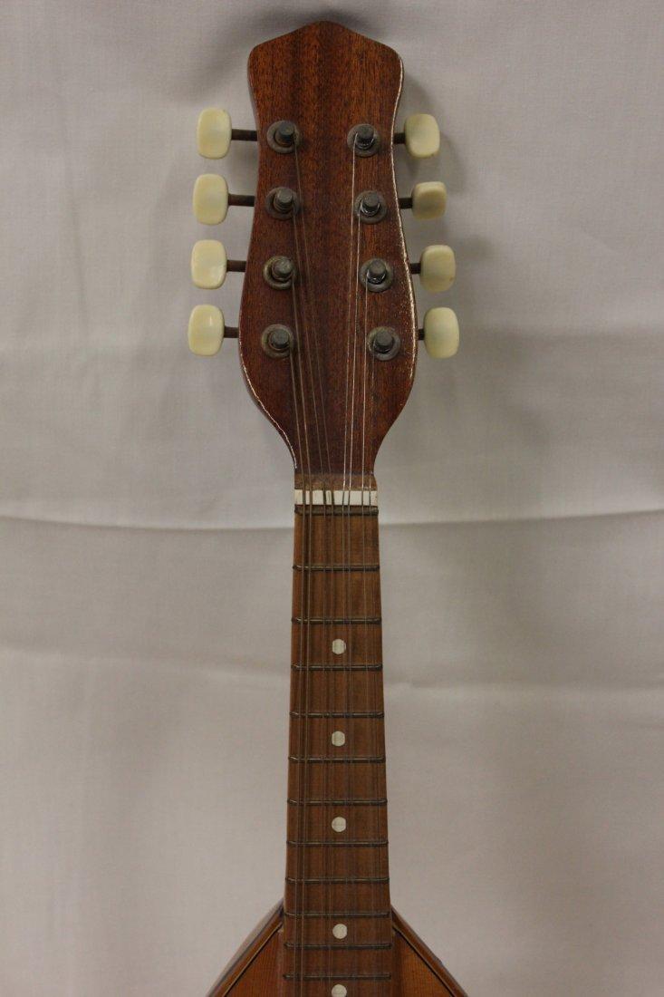 185: Italian mandolin by Leuteria Meazzi - 3