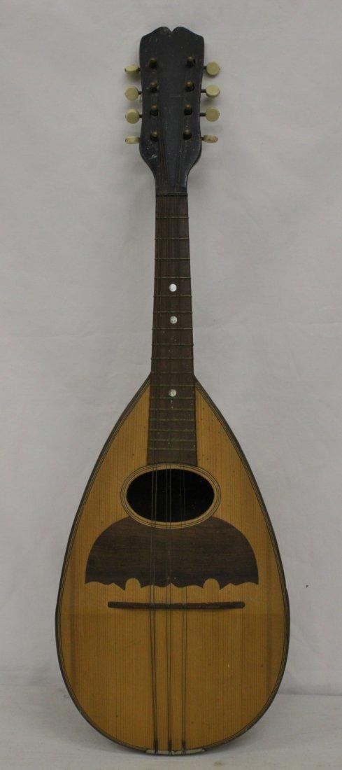 A vintage banjo