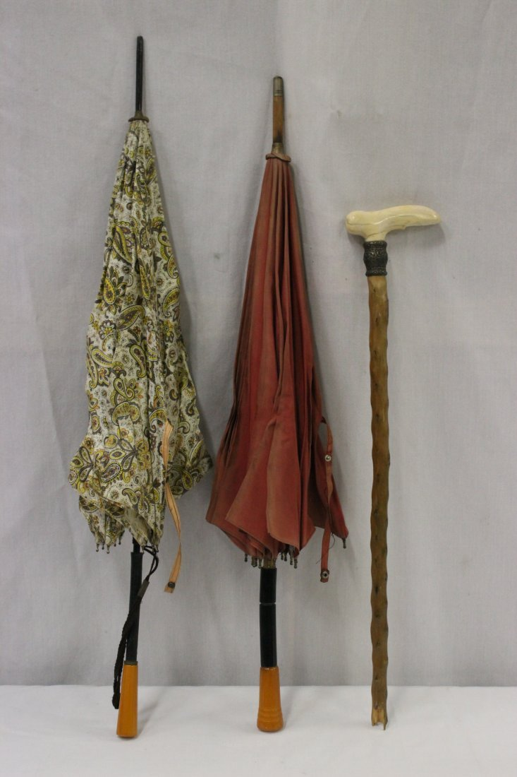 2 Bakelite handle umbrella & 1 ivory handle cane