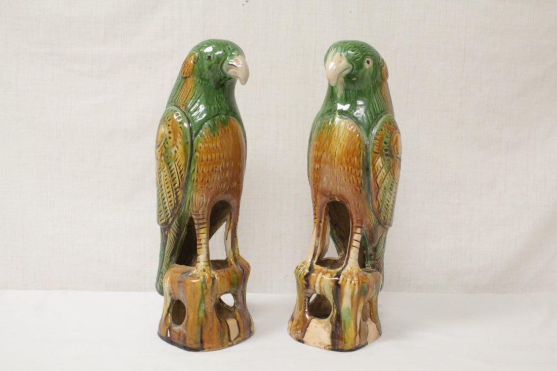 Pair Chinese sancai parrots