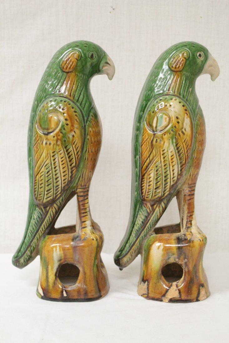Pair Chinese sancai parrots - 3