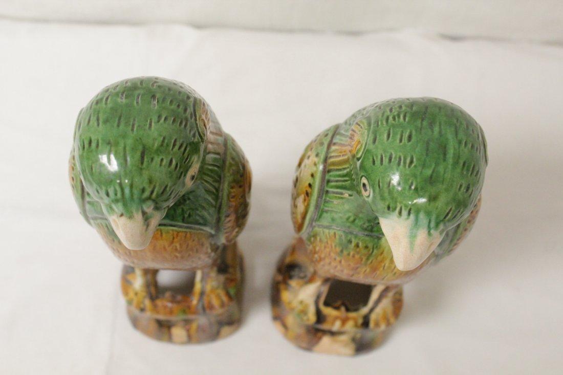 Pair Chinese sancai parrots - 6