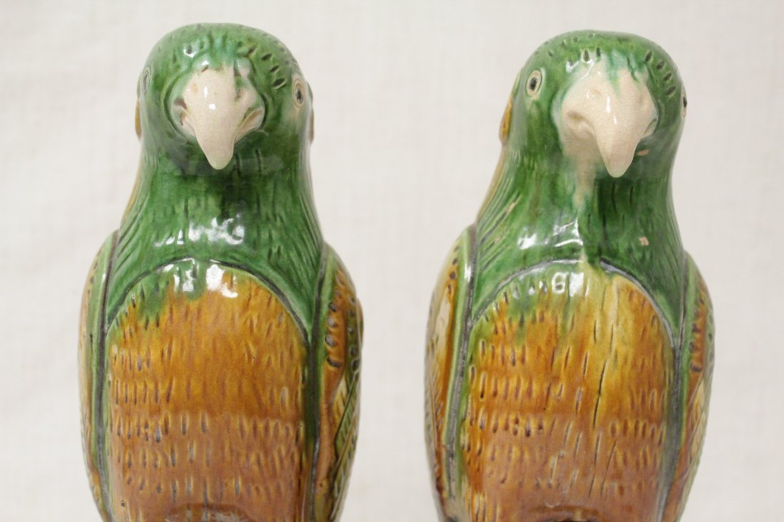 Pair Chinese sancai parrots - 7