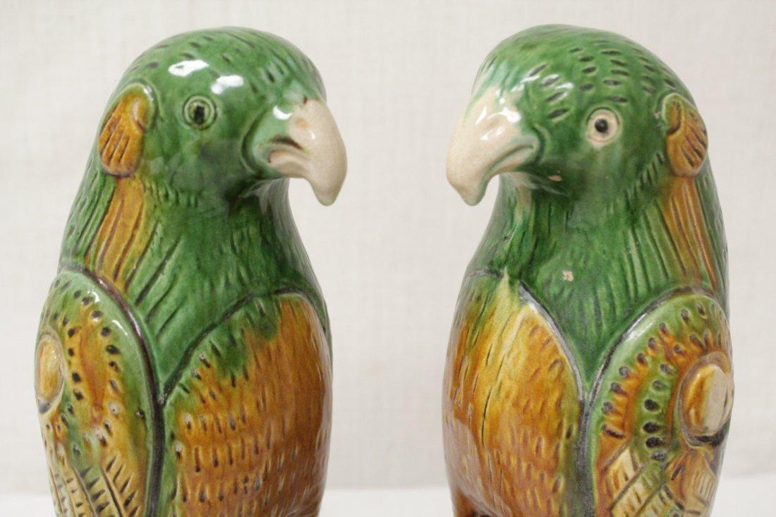 Pair Chinese sancai parrots - 9