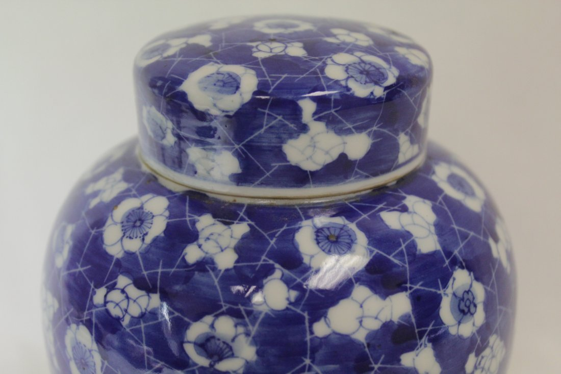 Chinese 19th c. blue & white covered jar - 10