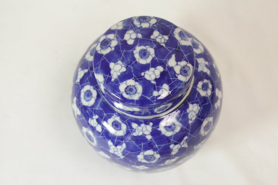 Chinese 19th c. blue & white covered jar - 2
