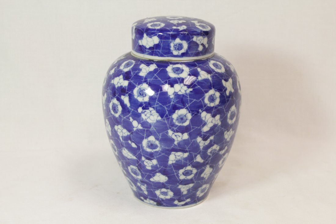 Chinese 19th c. blue & white covered jar - 5