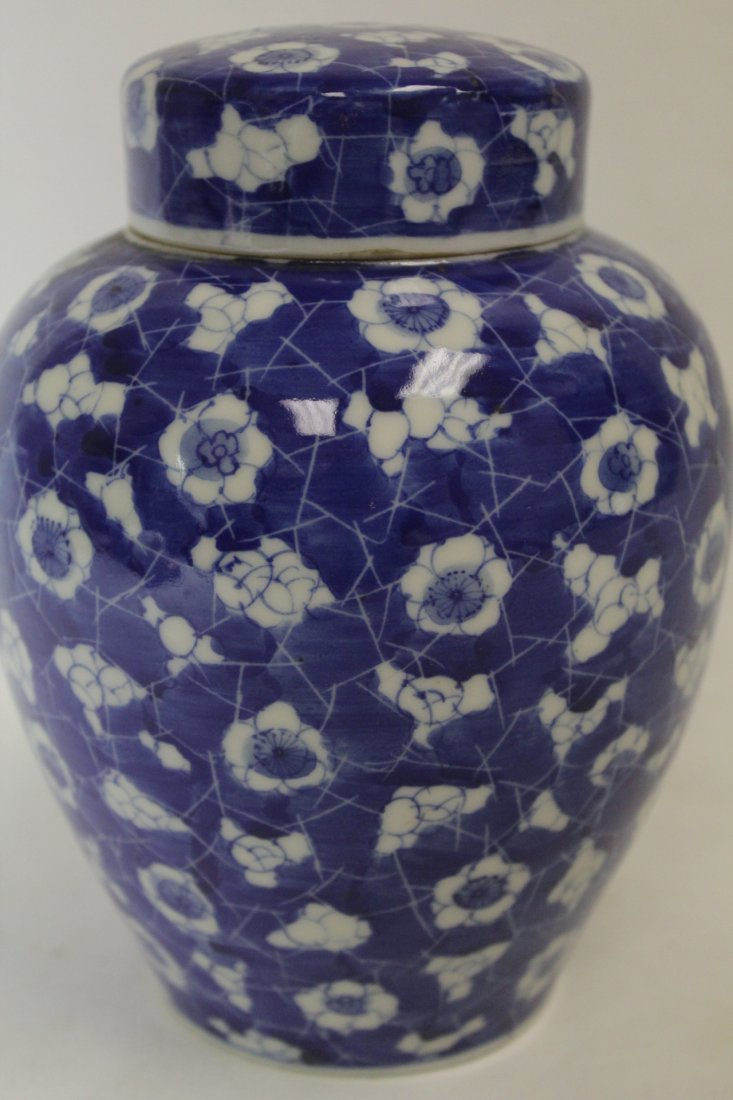 Chinese 19th c. blue & white covered jar - 6