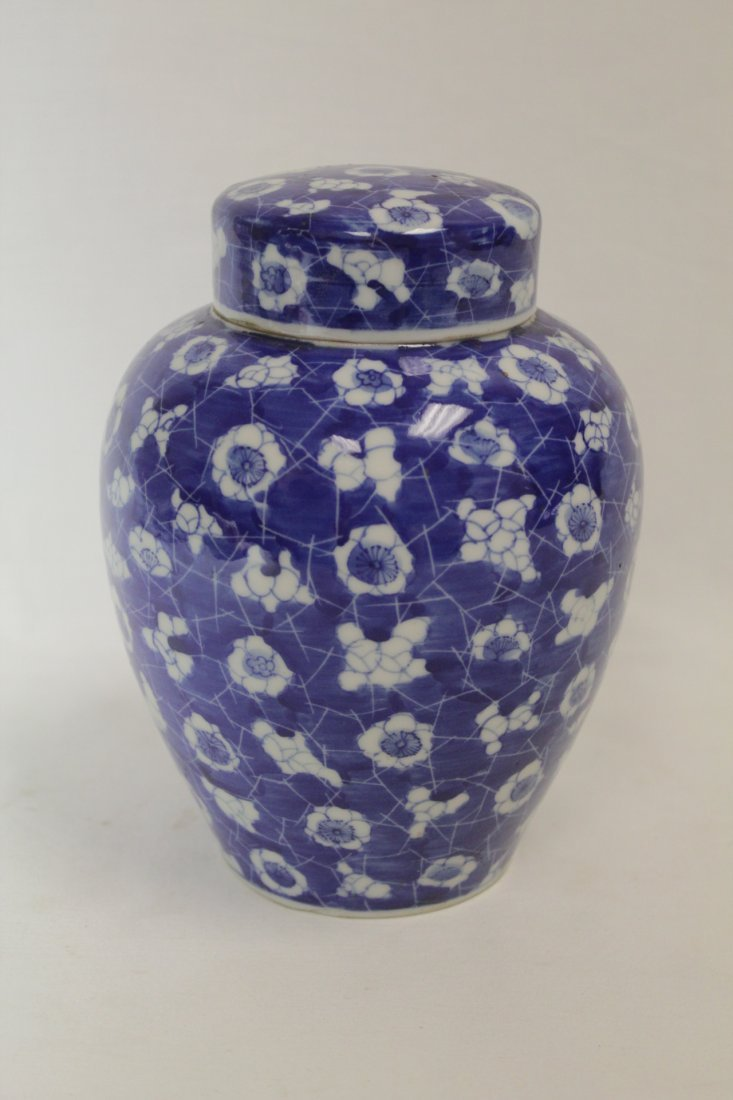Chinese 19th c. blue & white covered jar - 9