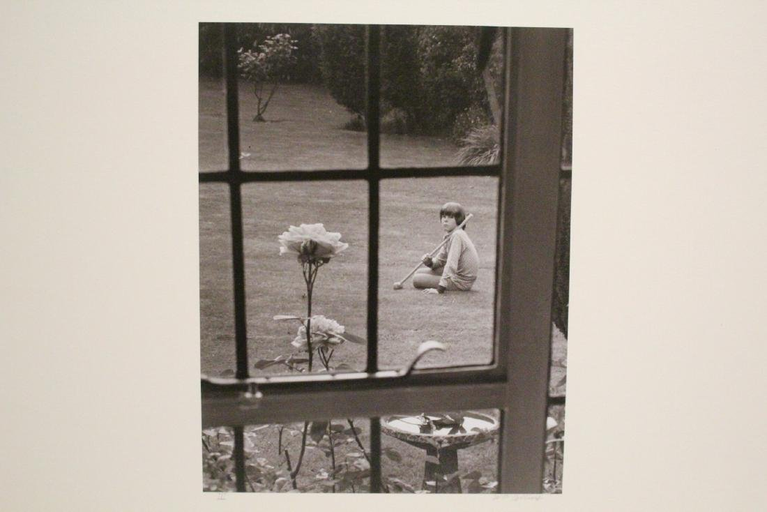 Collection of photographs by Bill Colins - 5