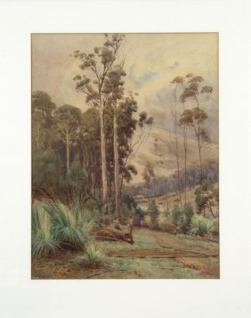 Albert Collingridge Timber Splitter Resting