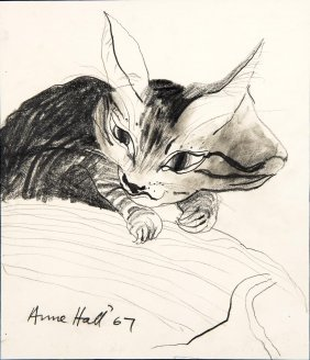 Anne Hall (born 1945) Cats 1967-76