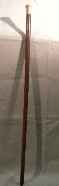 14: Tailors walking stick