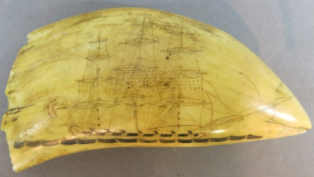LARGE EARLY SCRIMSHAWED WHALE'S TOOTH