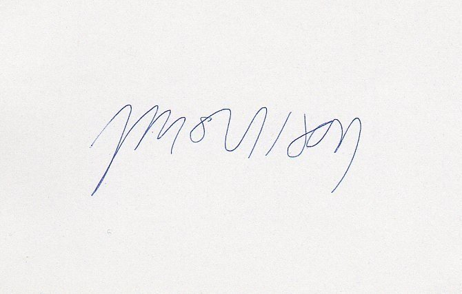 77: Jim Morrison The Doors Signed Vintage Album Page