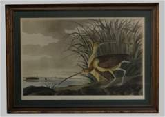 LITHOGRAPH AFTER AUDUBON & HAVELL