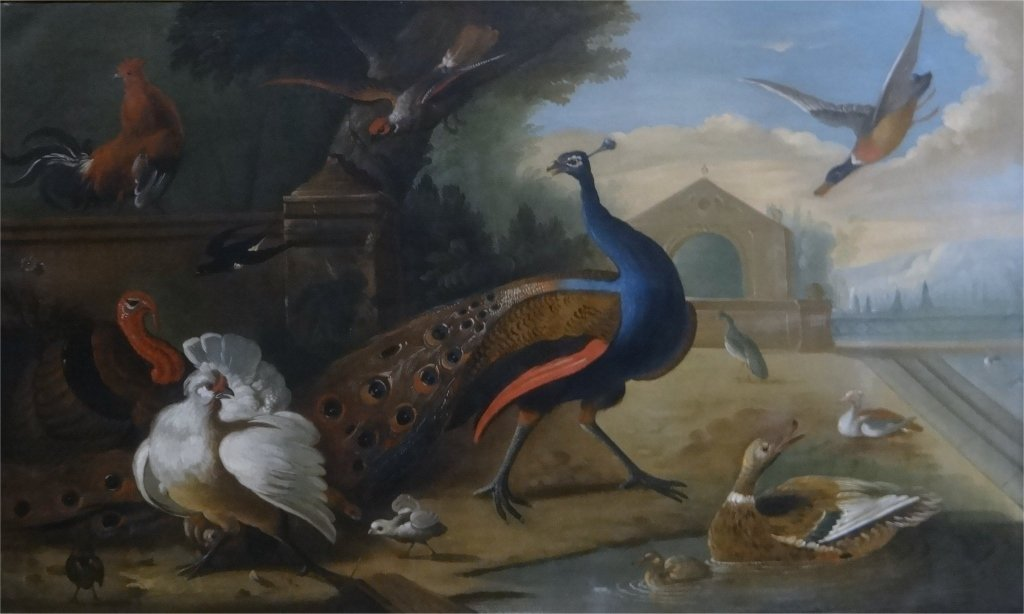 O/C OLD MASTER, EXOTIC BIRDS, CHRISTIES PROVENANCE - 2